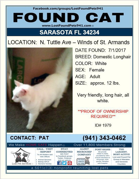 Do you know me? #Found #cat #missing #pets #longhair #Sarasota FL 34234 #LostFoundPets941