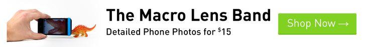 Photojojo's GIF Guide: Your Giffiest Questions, Answered   Photojojo
