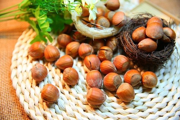 Health Nuts - Hazelnuts. See more at www.healthtaboo.com