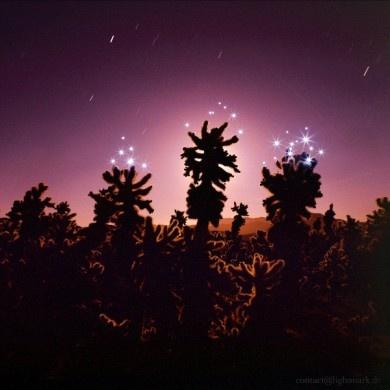 Amazing #desert landscape photograph by Lightmark.