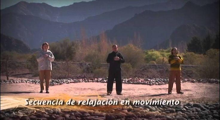 Dia 19. Curso de Meditación. Reiki Sin Fronteras. Secuencia de relajación en movimiento - YouTube