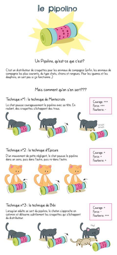 Le Pipolino, distributeur pour chats trop gourmands, au régime, ou angoissés à l'idée de manquer de nourriture.
