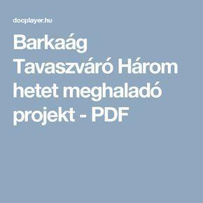 Barkaág Tavaszváró Három hetet meghaladó projekt - PDF