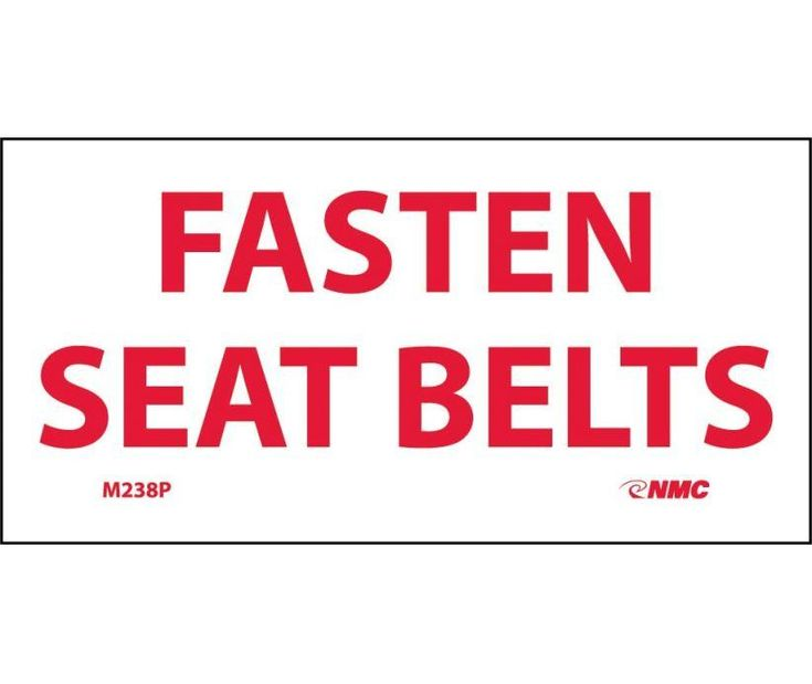 FASTEN SEAT BELTS, 2X4, PS Vinyl