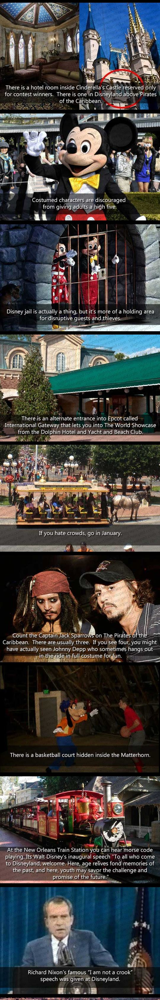Things You Don't Know About Disney World - The Meta Picture. (I read in a few places Nixon made his speech at the Contemporary. The world showcase entrance in EPCOT is accessible from the yacht and beach clubs, the boardwalk, the dolphin and the swan.)