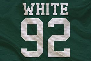 Green Bay Packers Photograph - Green Bay Packers Reggie White by Joe Hamilton