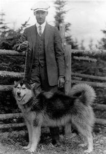 """M. Chabot, photographe de Roberval et le """"pur chien"""" esquimau acheté à Blanc-Sablon, en 1910. Comme il faisait peur au monde, il dût le vendre comme """"leader"""" au Dog Derby."""