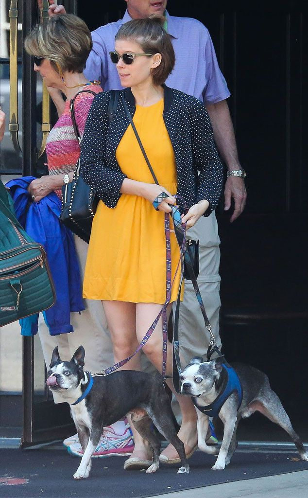 Kate Mara from The Big Picture: Today's Hot Pics  Dog days! The actress is spotted taking her pooches for a walk in NYC.
