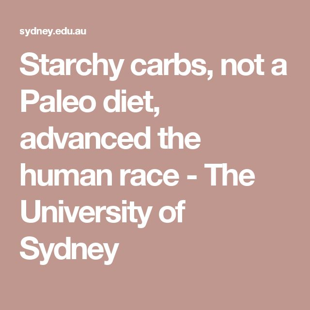 Starchy carbs, not a Paleo diet, advanced the human race - The University of Sydney