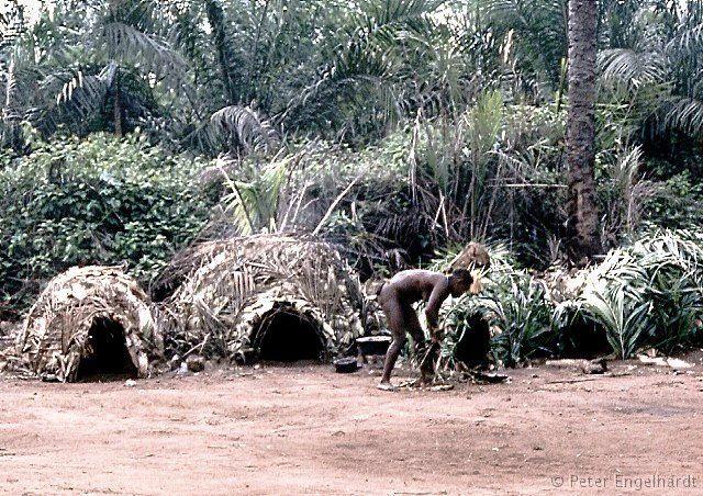 Pygmäen Lager Hütte Bau Zentralafrikanische Republik Tropischer Regenwald