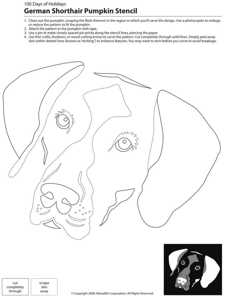63 besten hunde sch ferhund applikationen bilder auf. Black Bedroom Furniture Sets. Home Design Ideas