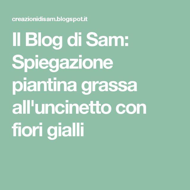 Il Blog di Sam: Spiegazione piantina grassa all'uncinetto con fiori gialli