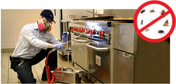 An environment where something as essential as food is prepared, must be kept extremely clean and hyegienic at all times. #pestcontrol #commercial #AllClearPest
