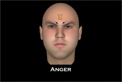 Sub Epic Mis-Adventures: Facial Action Coding System: Major Expressions