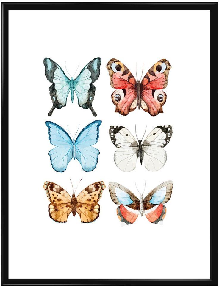 Visst är det något speciellt med fjärilar? Om inte vitsipporna hunnit komma än…