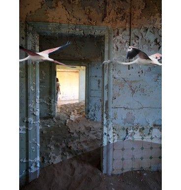Polecam surrealistyczny obraz w formacie 30x40 cm. Na obraz składaja się parę fotografii z Namibii nałożonych na siebie. Realizacja - Anna Mizgajska