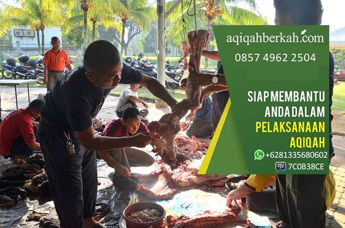 Jasa Aqiqah Jakarta Jasa Layanan Aqiqah Murah: SMS: 085749622504 Whatsapp: +6281335680602 PinBB: 7C0B38CE Website: www.aqiqahberkah.com jasa aqiqah, jasa aqiqah jakarta, jasa aqiqah tangerang, jasa aqiqah depok, jasa aqiqah bandung, jasa aqiqah bekasi, jasa aqiqah jakarta selatan, jasa aqiqah jakarta timur