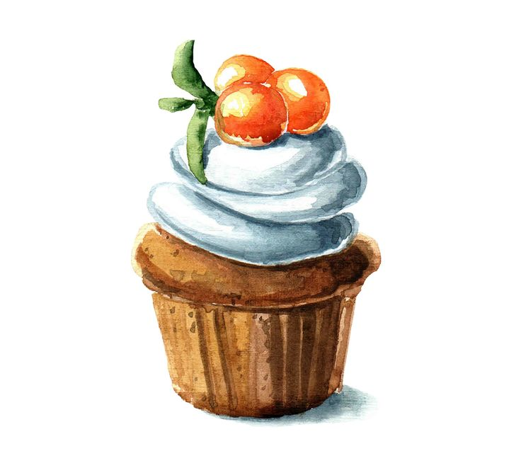 Watercolor Berry Dessert on Behance