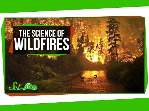 The Science of Wildfires - YouTube