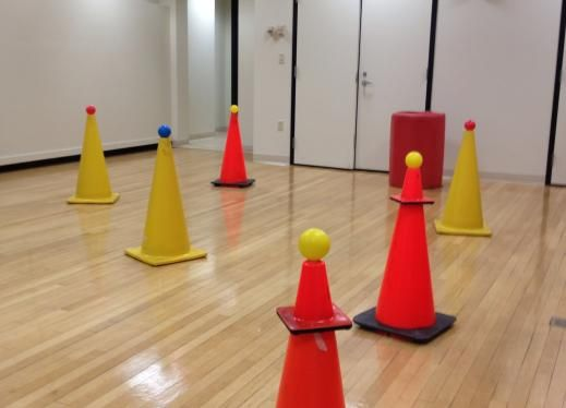 """This is a fun game is similar to capture the flag, but for students of all levels and abilities, including those in wheelchairs. It gives students a chance to work on directional cues, mobility skills, and orientation skills, while having the opportunity to maneuver around in an open space."""