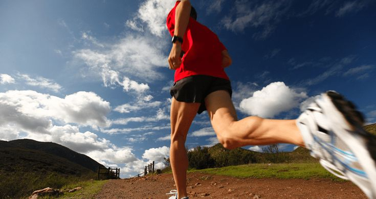 nutritious high energy density foods for athletes