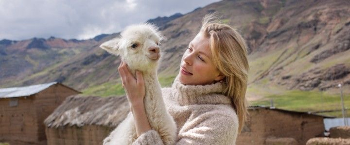 Alpacas part one: My lovely ones