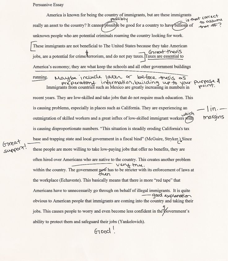 Essay For Students Of High School Euthanasia Argumentative Essay Argumentative Essay About Euthanasia Argumentative  Essay Persuasive Essay Topics Animals Samples Of Descriptive Essay Style Paper also Persuasive Essay Thesis Statement Examples Argumentative Essay On Euthanasia Euthanasia Essay Cesar Chavez  Topics For Synthesis Essay
