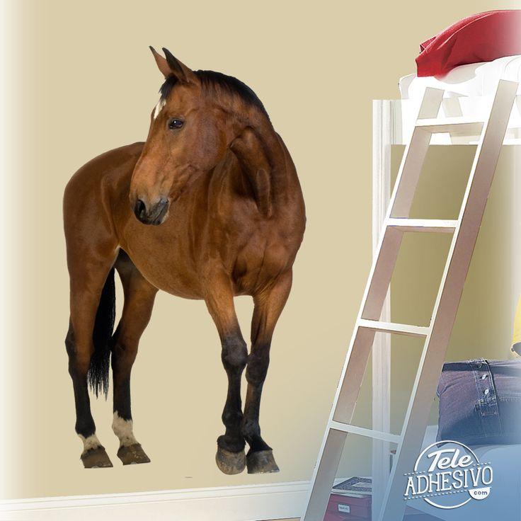 Vinilos Decorativos: Caballo marrón #caballo #animales #vinilodecorativo #decoracion #TeleAdhesivo
