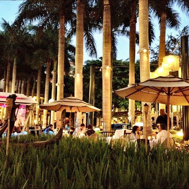 Sawa Restaurant and Lounge at Village of Merrick Park in Coral Gables