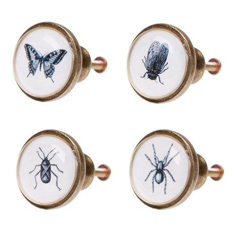 Knopp till byrå - Insekter