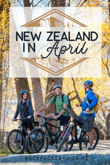 What is it like to Travel New Zealand in April? April is a beautiful time to travel New Zealand. Autumn colours start to decorate some areas in New Zealand like Wanaka, Arrowtown and Hawke's Bay and the weather tends to mostly fine and sunny. April is one of New Zealand's shoulder seasons so expect the country to be a little quieter and some expenses a little cheaper. The shoulder season also allows you to travel more spontaneously too.