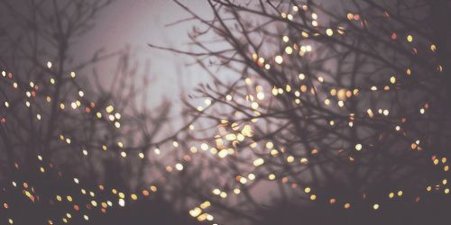 Christmas Lights Twitter Header Tumblr Original.jpg