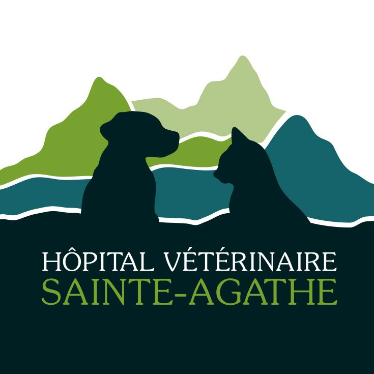 Logo design - Hôpital vétérinaire Ste-Agathe