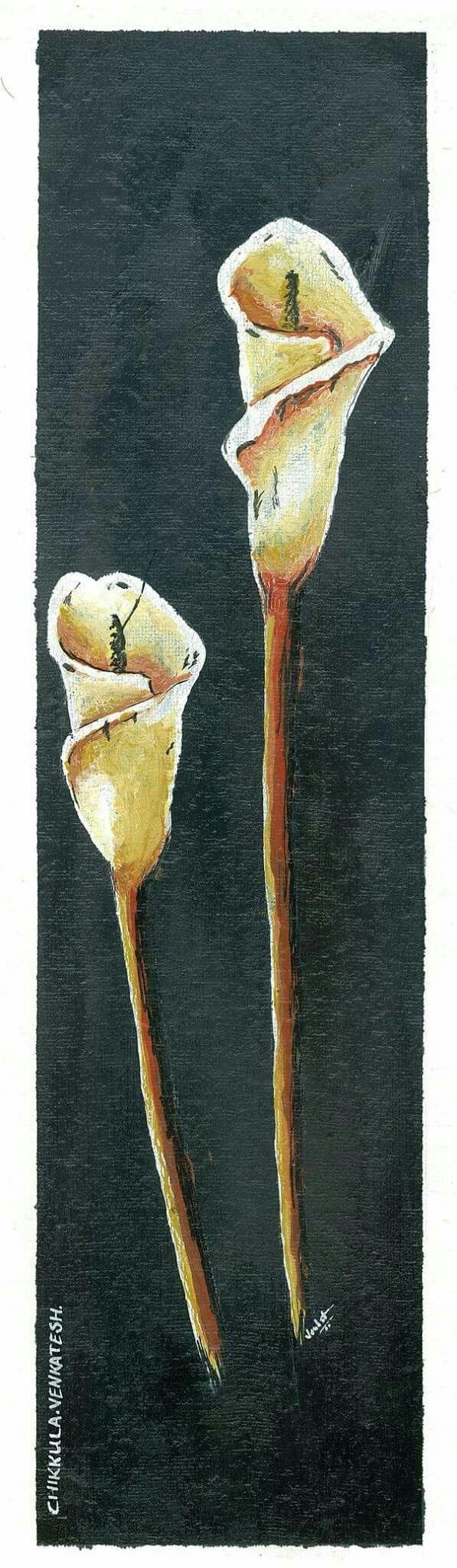 Twin flowers. .......