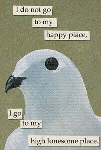 troubled birds are the best birds ✖️glitchhorizon✖️