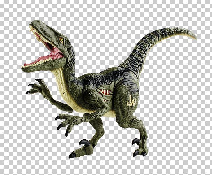 Velociraptor Tyrannosaurus Dinosaur Png Clip Art Dinosaur Dinosaur Fossils Dinosaur Intelligence Dinos Tyrannosaurus Dinosaur Tyrannosaurus Dinosaur Toys