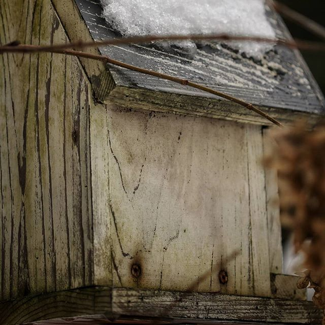 Weathered bird house in the snow...RURAL magazine.