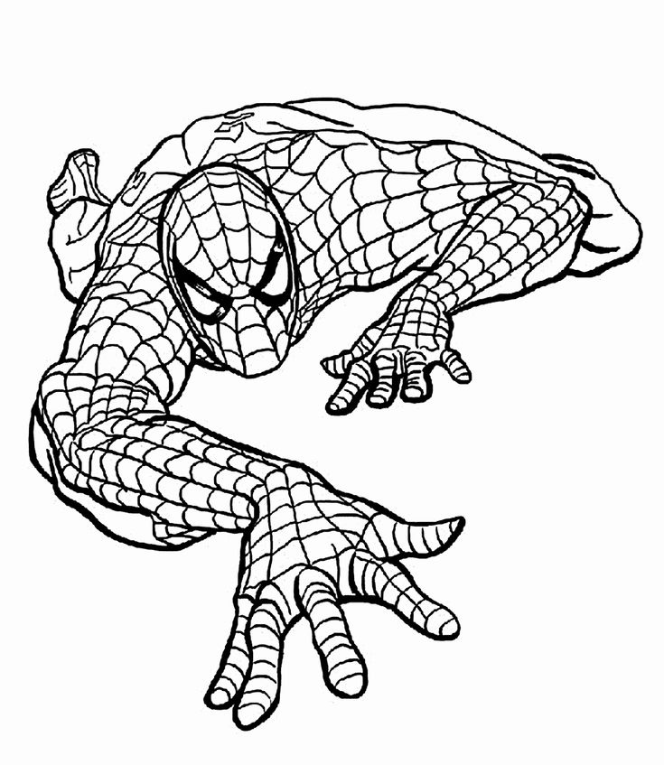Cartoon Coloring Pages Pdf Best Of Spider Man Climbing ...