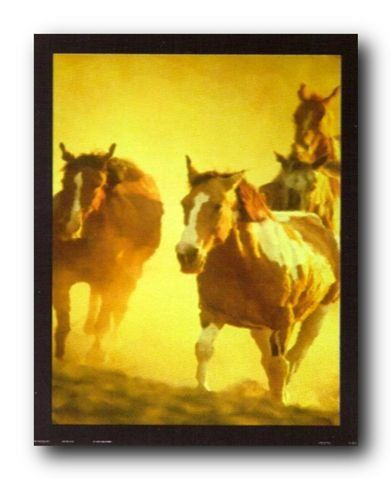 Running Horses & Sunbeams in Group Wild Animal Wall Decor…