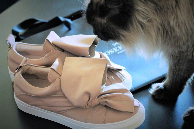 Not even cats can resist Josefinas sneakers! #JosefinasPortugal