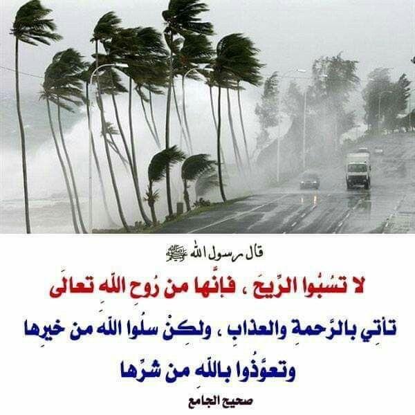 Pin By Lovely On روح وريحان Islam Quran Islam Hadith