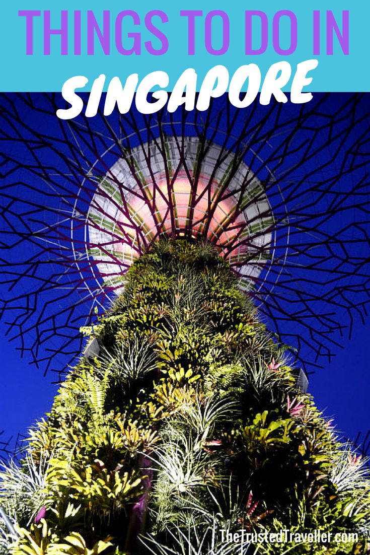 Garden By The Bay Attractions best 20+ gardensthe bay ideas on pinterest   holiday in