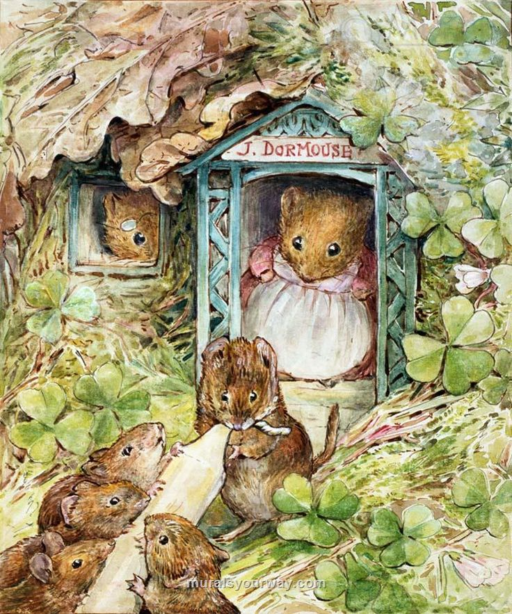 """Beatrix Potter, illustration for """"The Tale of Ginger and Pickles"""""""