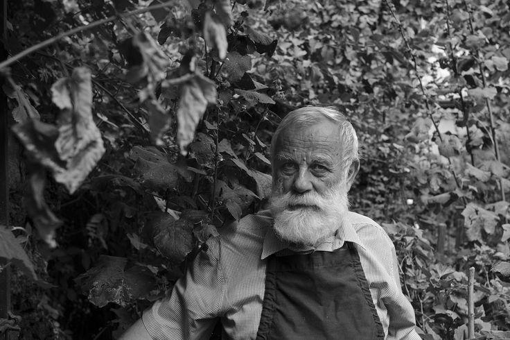 Portret. Stefan Caltia