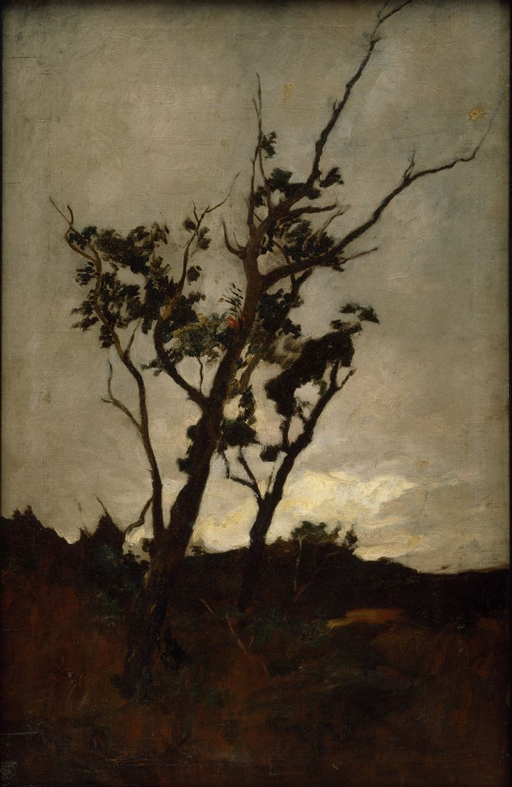 Petrus_van_der_Velden_-_Tree_study_-_Google_Art_Project.jpg (2845×4372)
