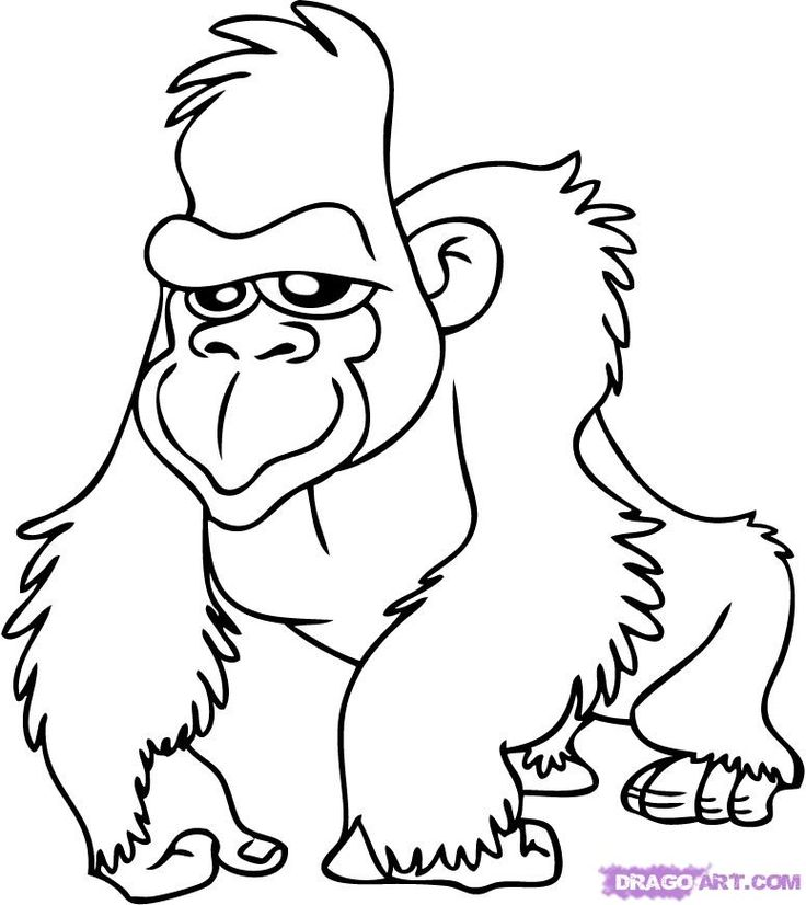 Jungle Animal Cutouts Printable Coloring Coloring Pages