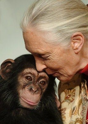 Jane Goodall and friend...so much love.