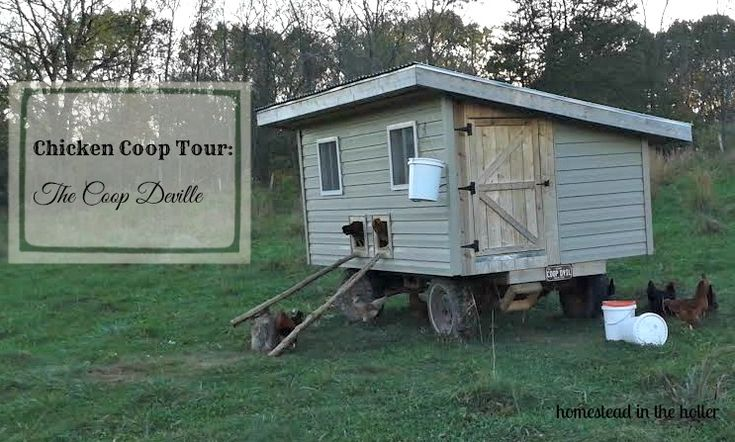 1000 ideas about mobile chicken coop on pinterest for Mobile hen house plans