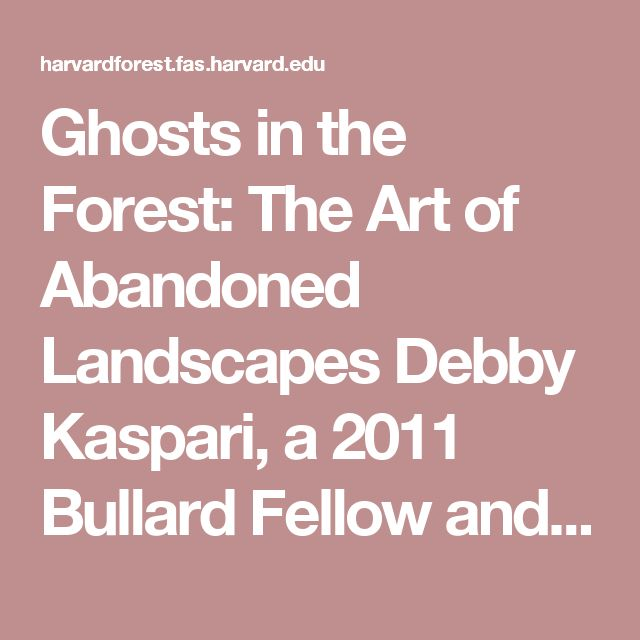harvard art history dissertations