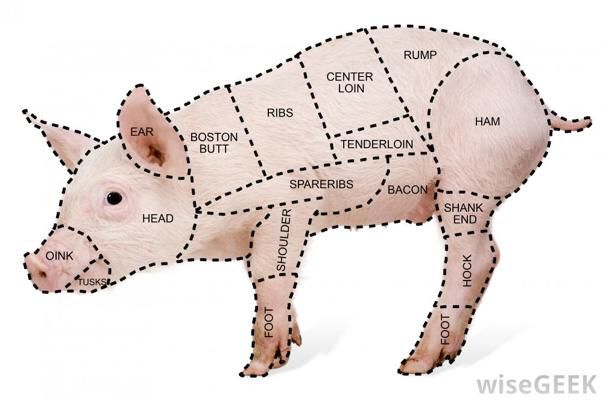 butcher a pig diagram pork meat and poultry rh pinterest com Hog Parts Diagram Pork Cuts Diagram